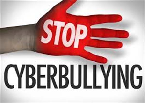 Cyberbullying Workshops