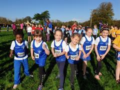 Limerick Cross Country Athletics