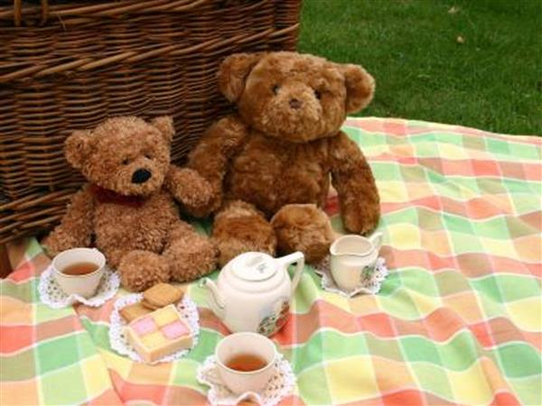 Ms. Bury's Teddy Bears' picnic