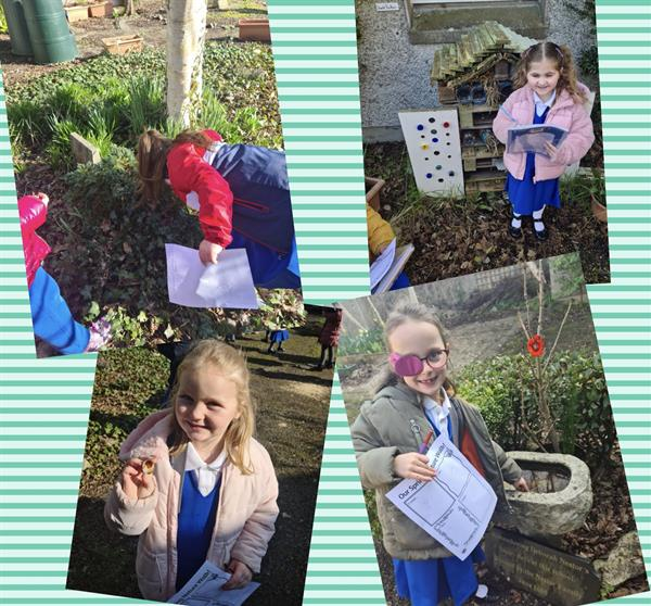 A Visit to the School Garden- Caring for our school environment